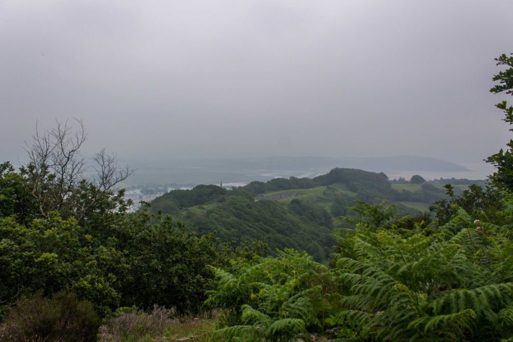View from the top of Moel-y-Gest