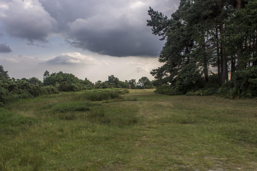 Camp Hill Trig Pillar